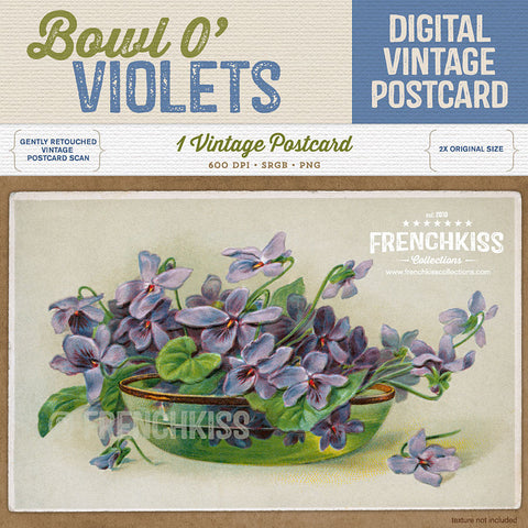Bowl O Violets Digital Vintage Postcard