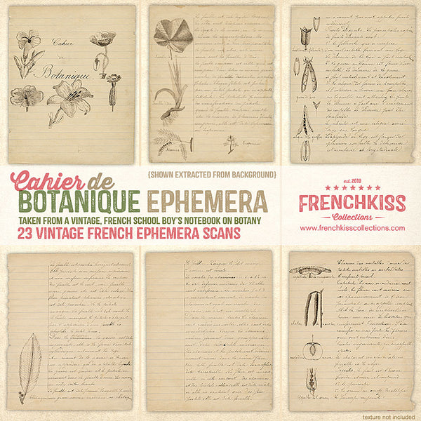 Vintage French Papers from a school boy's notes and illustrations on botany.