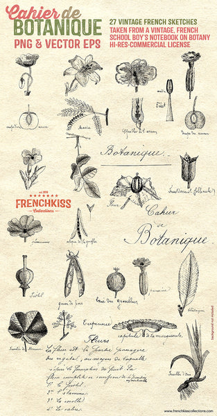 Vintage French overlays and vector eps from a school boy's sketches and notes on botany.