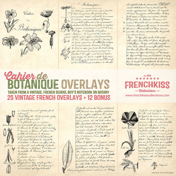 Vintage French overlays from a school boy's sketches and notes on botany.