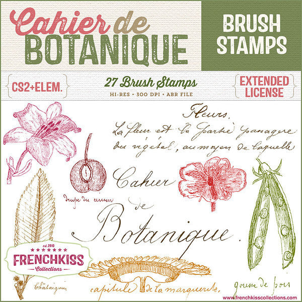 French Kiss Collections Cahier de Botanique vintage French Photoshop brushes.