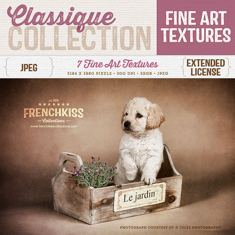 Classique fine art texture collection. Commercial license.