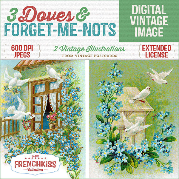 French Kiss Collections 3 Doves & Forget-me-nots digital images from vintage postcards.