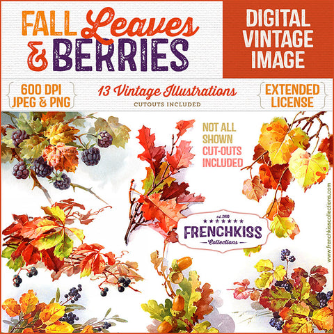 Fall Leaves and Berries Vintage Graphics 600 DPI extended license.