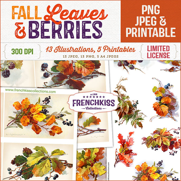 Fall Leaves and Berries vintage graphics and printables.