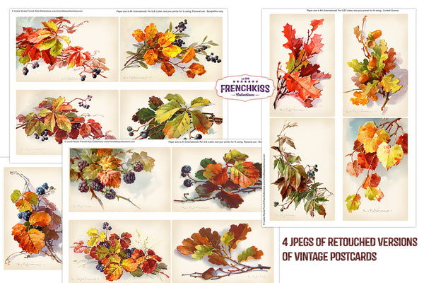 Fall Leaves and Berries Vintage Catharina Klein illustration postcards printables.