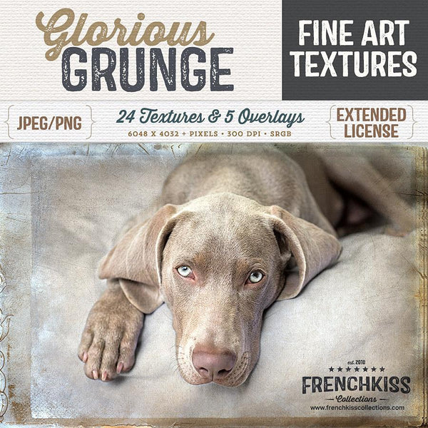 Fine art and grunge texture collection from old glass negatives and vintage papers.