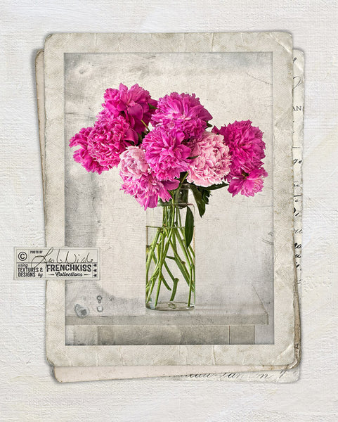 Fine art floral photography using the digital Vintage Grunge Frames.