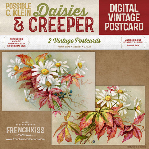 Daisies and Creeper digital vintage postcards.