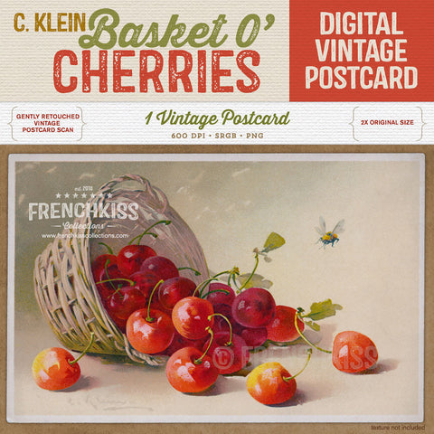 Klein Basket O Cherries Digital Vintage Postcard