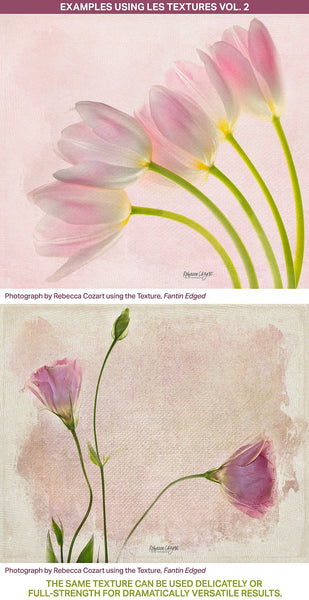 Textured floral photography examples using the Les Textures 2 Collection.