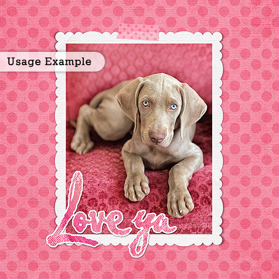 Weimaraner puppy portrait using the Love Ya digital frames.