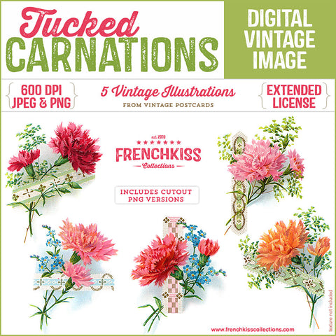 5 delightful illustrations of carnations tucked into ribbon holders from vintage postcards digital download..