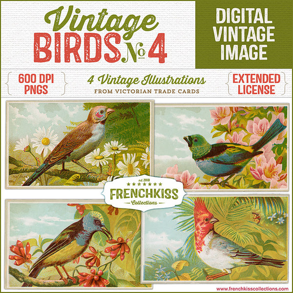 4 Victorian Trade cards of birds on branches commercial license digital illustrations.