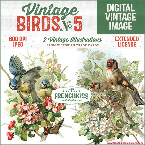 Vintage birds on flowering branches illustrations from Victorian trade cards.