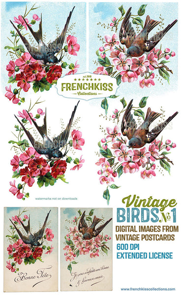 Illustrations from vintage postcards of birds flying with bouquets of flowers in their beaks. 3 versions each.