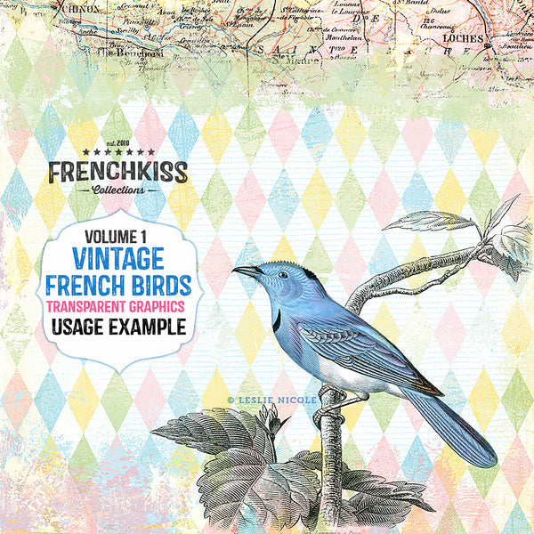 Design example using the Vintage French Bird Illustration graphics.