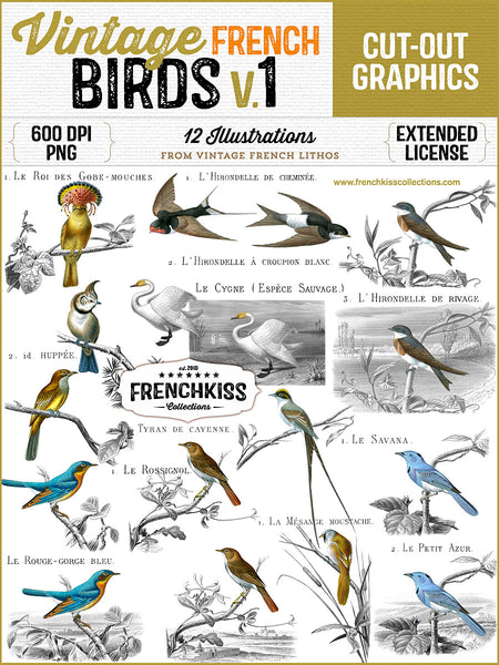 12 magnificent bird illustration from the late 1800's commercial use graphics.