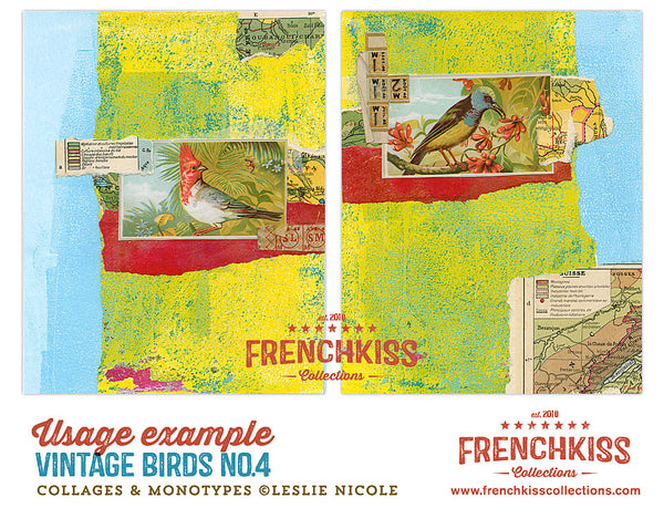Collage example using Vintage Birds No. 4 digital illustrations.