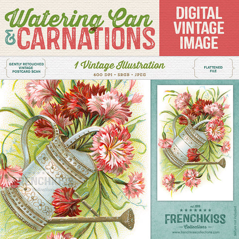 Watering Can and Carnations Vintage Image