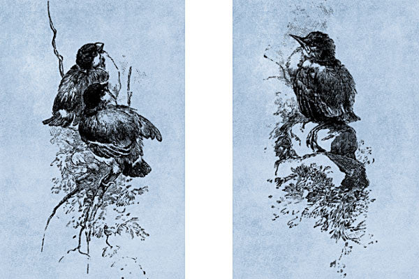 Victorian Engraved Bird Brush Stamps No.2