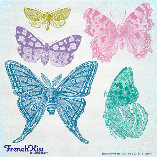 Butterflies Brush Stamp No 1