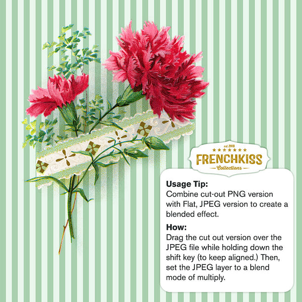 Tucked Carnation vintage illustration usage example.