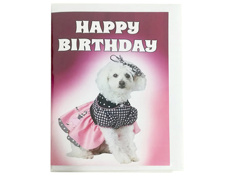Birthday Card Collection - Puppy Collection No. 10