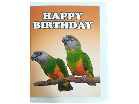 Birthday Card Collection - No. 13 Senegal Parrots