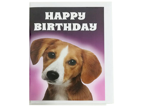 Birthday Card Collection - Puppy Collection No. 13