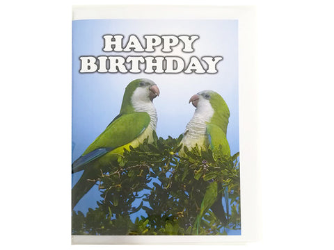 Birthday Card Collection - No. 14 Quaker Parrots