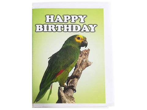 Birthday Card Collection - No. 16 Turquoise Fronted Amazon Parrot