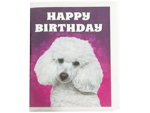 Birthday Card Collection - Puppy Collection No. 17