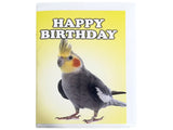 Birthday Card Collection - No. 17 Cockatiel aka. Miniature Cockatoo
