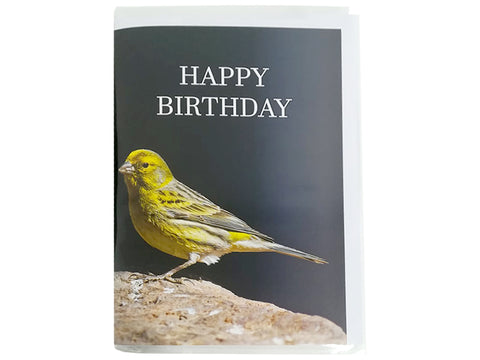 Birthday Card Collection - No1. European Serin