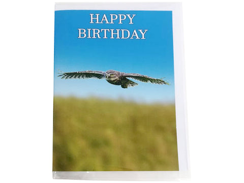 Birthday Card Collection - No. 22 Little Owl