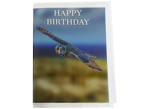 Birthday Card Collection - No. 23 Short-eared Owl