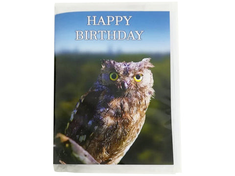 Birthday Card Collection - No. 24 Eurasian Scops Owl