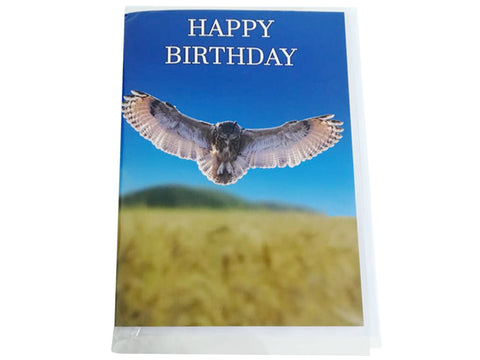 Birthday Card Collection - No. 25 Eurasian Scops Owl