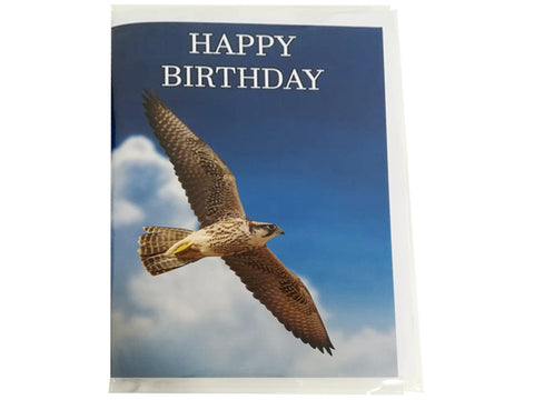 Birthday Card Collection - No. 27 Lanner Falcon