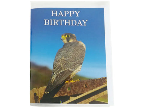 Birthday Card Collection - No. 28 Barbary Falcon