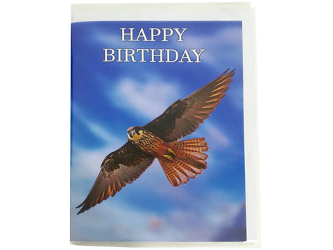 Birthday Card Collection - No. 29 Eleonora's Falcon