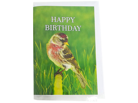 Birthday Card Collection - No2. Common Redpoll
