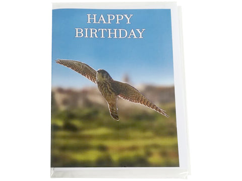 Birthday Card Collection - No. 31 Merlin