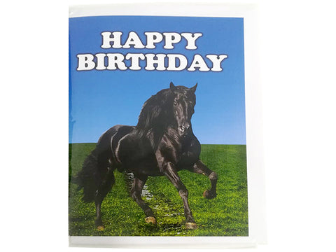 Birthday Card Collection - No. 31 Lusitano Horse