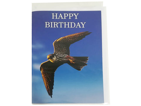 Birthday Card Collection - No. 32 Eurasian Hobby
