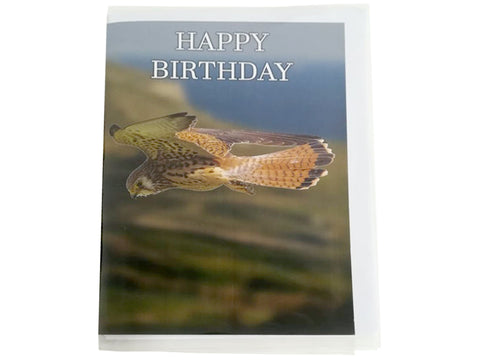 Birthday Card Collection - No. 34 Lesser Kestrel