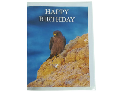 Birthday Card Collection - No. 36 Sooty Falcon