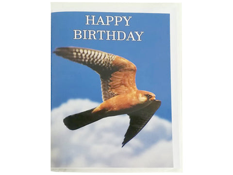 Birthday Card Collection - No. 37 Red-footed Falcon