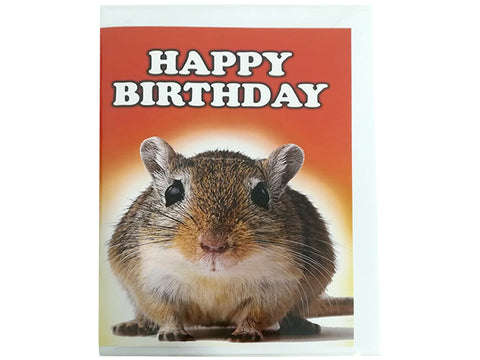Birthday Card Collection - No. 49 Gerbil